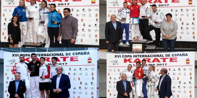 Copa de España de karate
