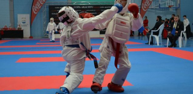 sexta edición de la Copa Internacional Akai Ryu de kárate