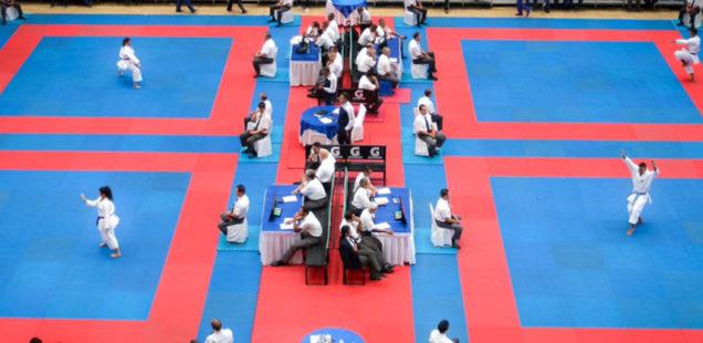 800 atletas participan en la XXVI Copa Internacional Simón Bolívar